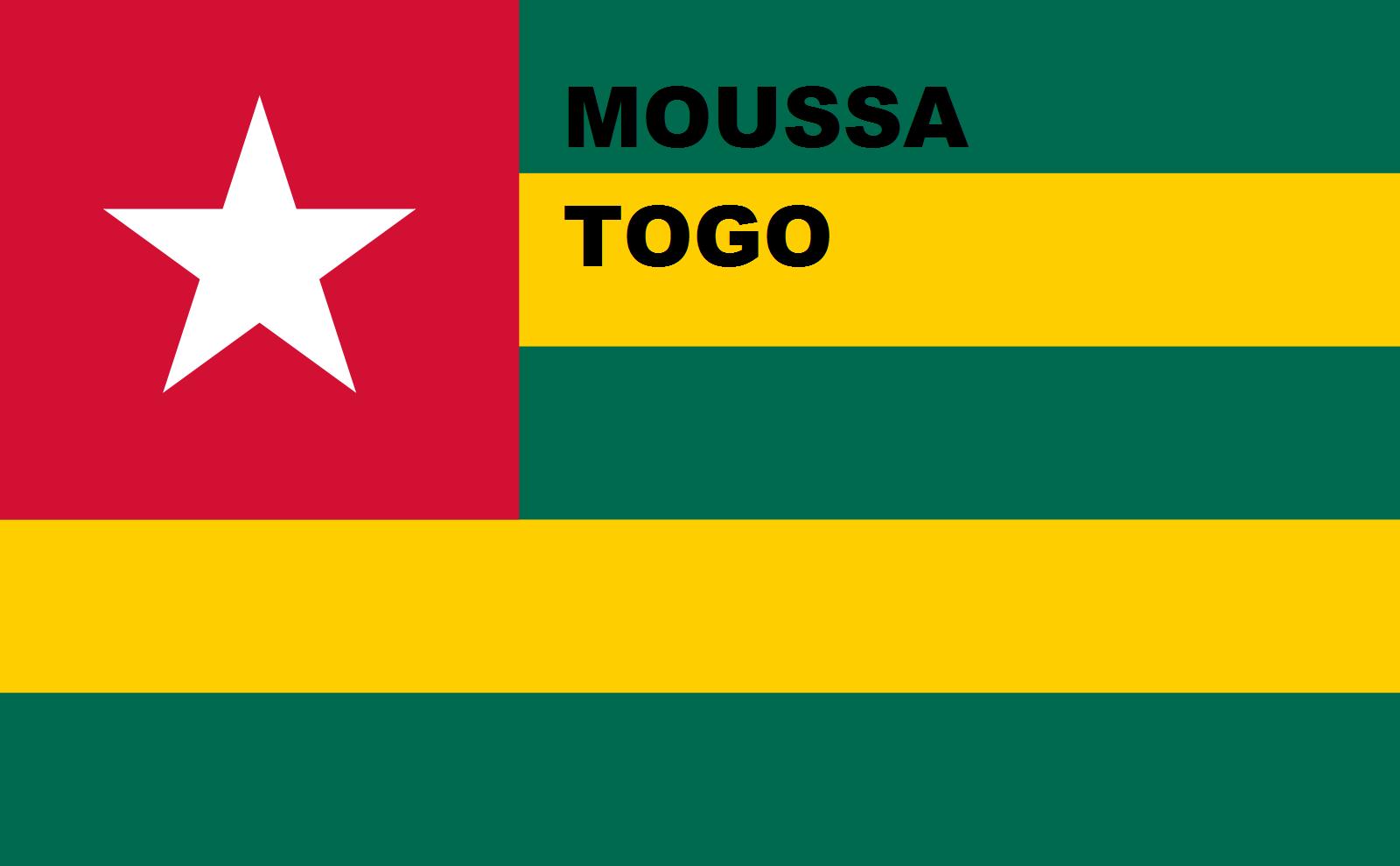 Moussapolitiquetogo Logo